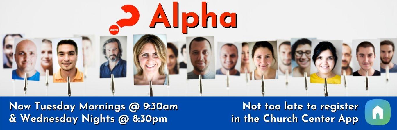 Copy of Alpha website banner 1366×450 (5)